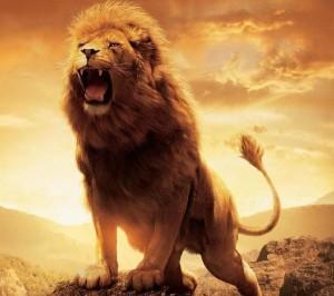 LION_ROARS